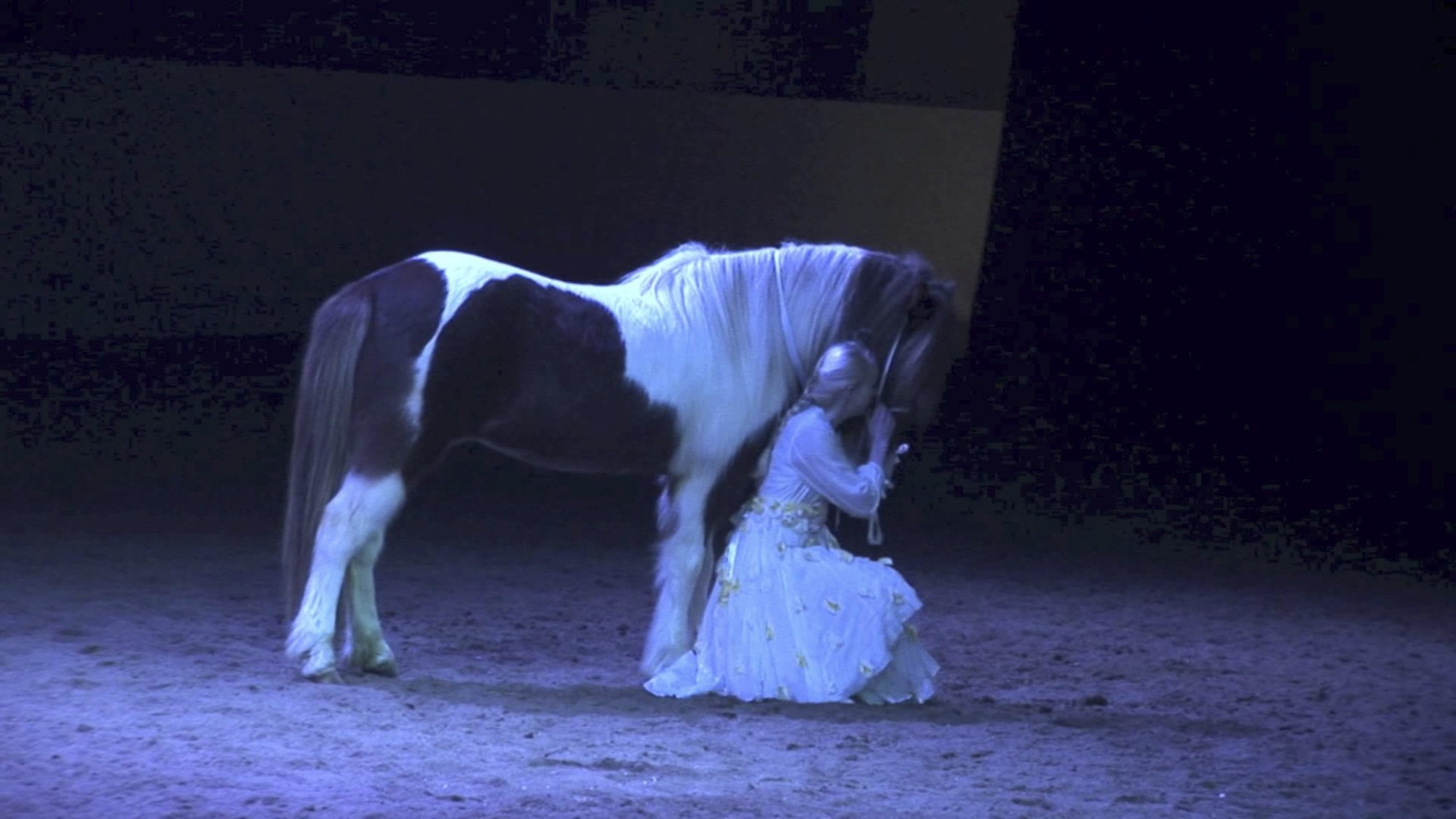 Horse Theatre and Northern Lights